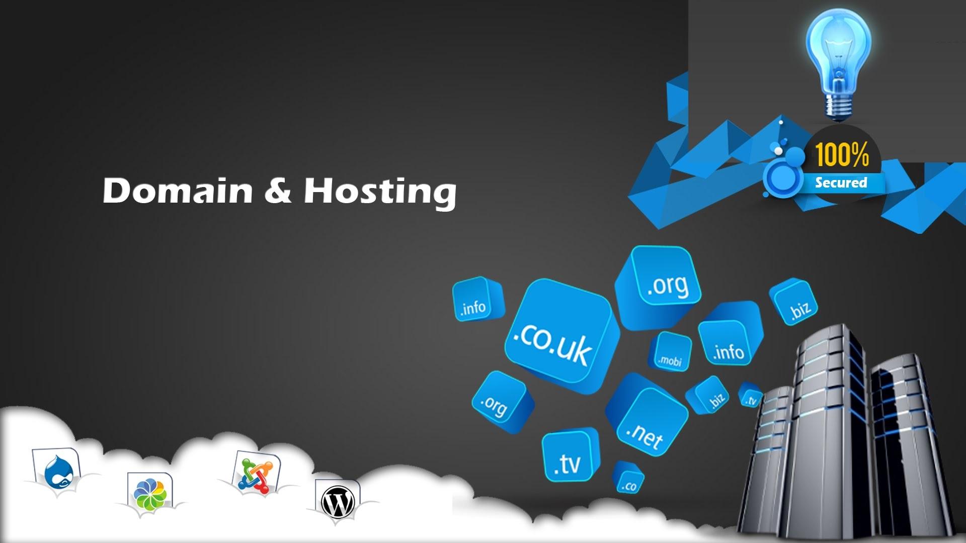 Domains & Web Hosting | Binplus Technologies (P) Limited